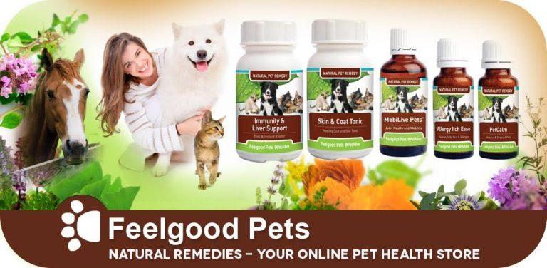 Online Pet Health Store Banner